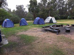 joey-cub-camp-2