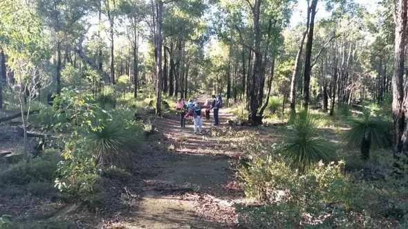 Blue Cord hike